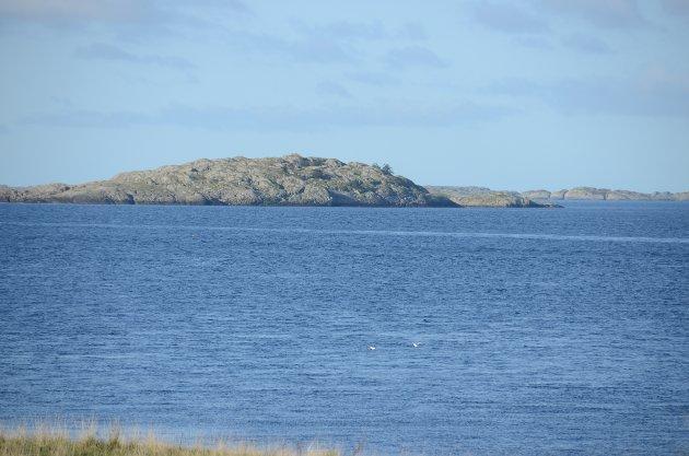 Alstein: Her ute ved disse holmene ønsker Randaberg kommune å tillate oppdrett av laksefisk.
