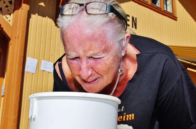 Grethe Axten  fra Krøderen likte ikke lukten.
