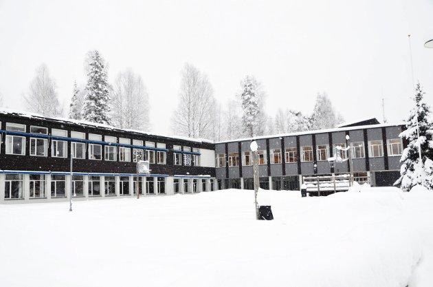 ØNSKER ÉN SKOLE: Lærerstudent Eugen Sebastian Hovden Haush ønsker seg én skole i Krødsherad i framtida, enten det blir på Krøderen eller Noresund.