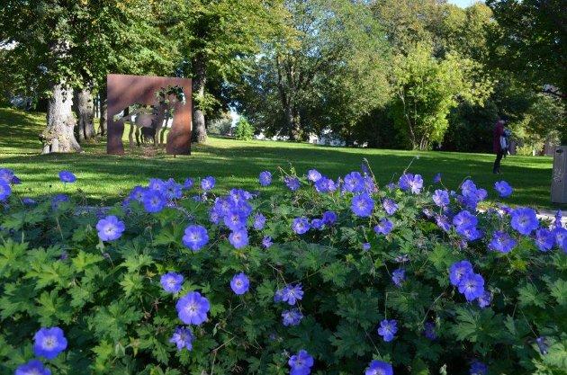 Tilhører alle. – Friluftslivsområdene, grøntarealene, trærne og parkene tilhører oss alle, ikke bare vi som bor her i dag, men fremtidige generasjoner, skriver Inger Hilmersen, her med et bilde fra Lykkebergparken.