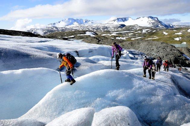Bærekraft er balansen mellom «people, planet og profitt» – eller på norsk; det sosiale, det grønne og den livgivende bunnlinja. Foto: Arnfinn Skinlo