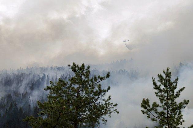SKOG I FARE: Også vårt distrikt er utsatt, her fra en tidligere brann i området mellom Sel og Brennhaug.