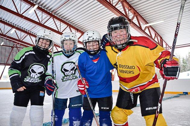 FAMILIEHOCKEY: Oda, Erik, Iver og Ole Leiråmo stilte eget familielag i Løkkehockeyturneringa på Skillevollen lørdag.