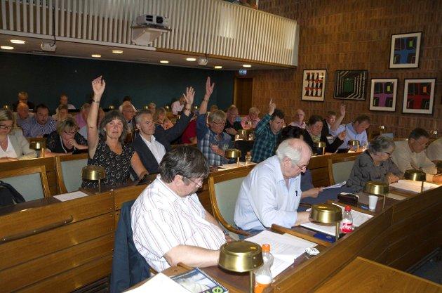 Kommunestyret i Ringerike er for dominert av menn, mener Solidaritetslistas toppkandidat.