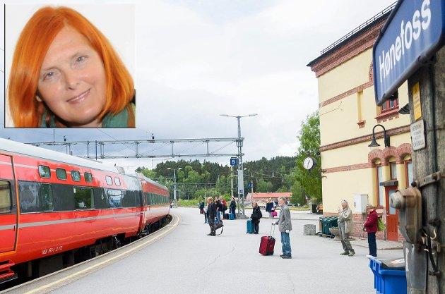 VIL ØDELEGGE: – Svært få politikere går ut og advarer mot at Steinsfjorden kan bli ødelagt og bli til brun sump på grunn av vei og bane, skriver Eva Bekkelund-Eriksen i dette leserinnlegget.