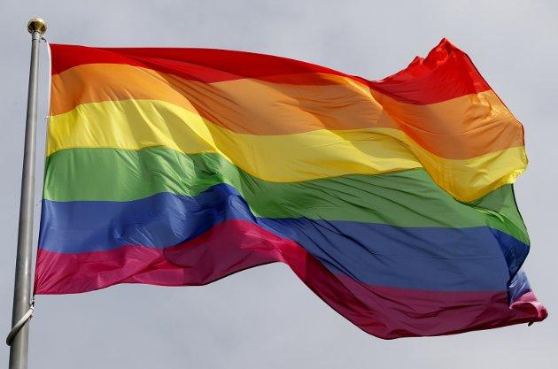 – I mange Østfoldkommuner har det gått lang tid med en kommunal flaggstang som aldri har vist seg i alle regnbuens farger, skriver Tage Pettersen i dette innlegget. (Foto: NTB Scanpix)
