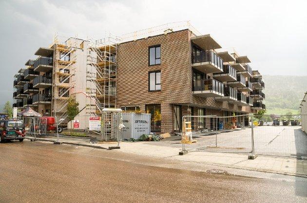 BØR STILLE GARANTI: Gotfred Rygh (SV) mener Modum kommune bør stille garanti for egenkaptialen og på den måten hjelpe lokal ungdom inn på boligmarkedet.