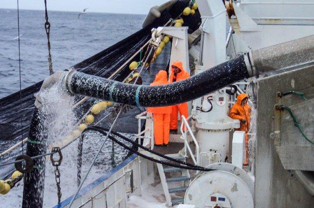HEILT FEIL MEDISIN: Både fiskerinæringa og havbruksnæringa vil bli skadelidande om Senterpartiets draum om å seie opp EØS-avtalen blir ein realitet, meiner to høgrepolitikarar.