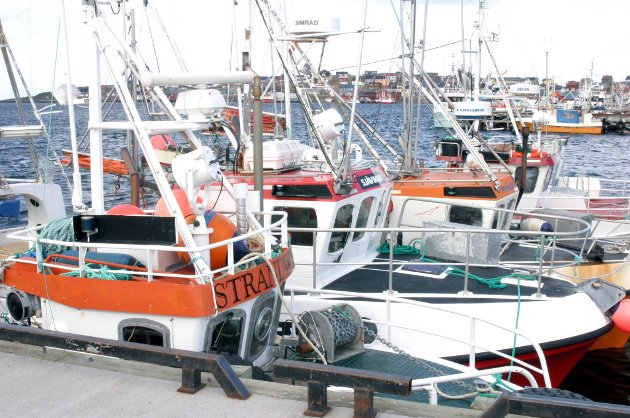 Fiskerimyndighetene vil ha minst mulig av sjarkflåten, ifølge artikkelforfatteren. Illustrasjon.