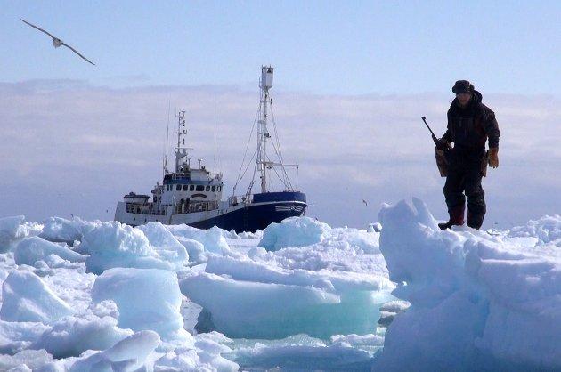 I ISØDET: En film du bør få med deg, mener Nordlys' anmelder om Ishavsblod.