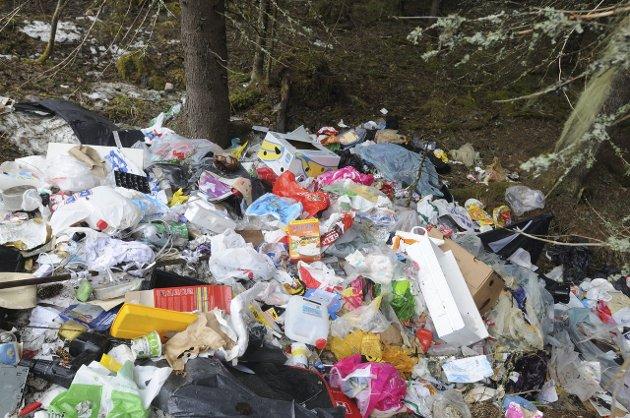 Opprydding etter kasting av søppel i naturen legger beslag på store ressurser. Her har noen gjort unna vårrengjøringa langs en vei på Østsinni for et par år siden.