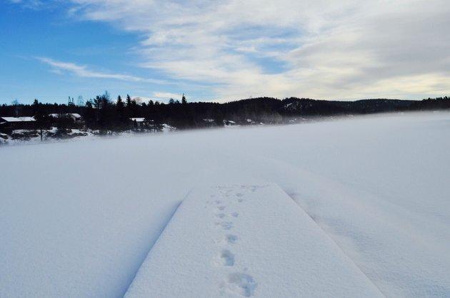 Her kan du bla deg gjennom det vakre landskapet vi har i Follo. Sørmarka byr på masse snø, skiløyper og full sol. Alle foto: Silje Andersen