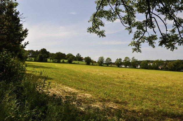 Jordvern handler om å sikre kommende generasjoner mulighet til å dyrke mat på egen jord. Dessuten matsikkerhet, beredskap og politisk uavhengighet, skriver Sps Olav Nordheim.