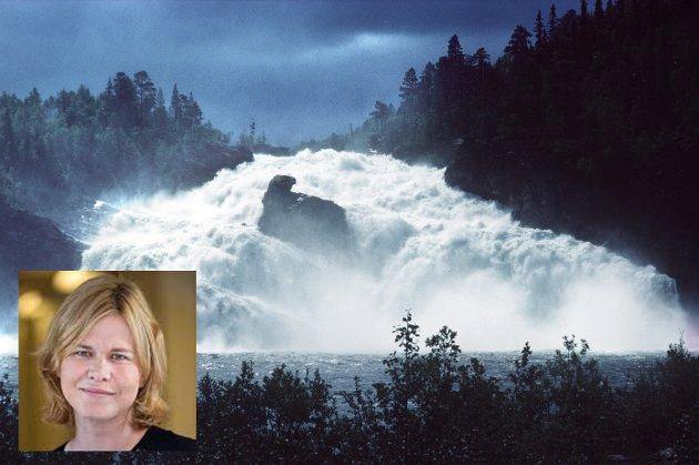 Jeg savner en offensiv holdning og gode incentiver for at norske kraftprodusenter kan gjennomføre prosjekter, modernisering av eksisterende vannkraft, og samtidig øke produksjonen av fornybar energi uten negative ringvirkninger for miljøet, skriver Liina Vermee.