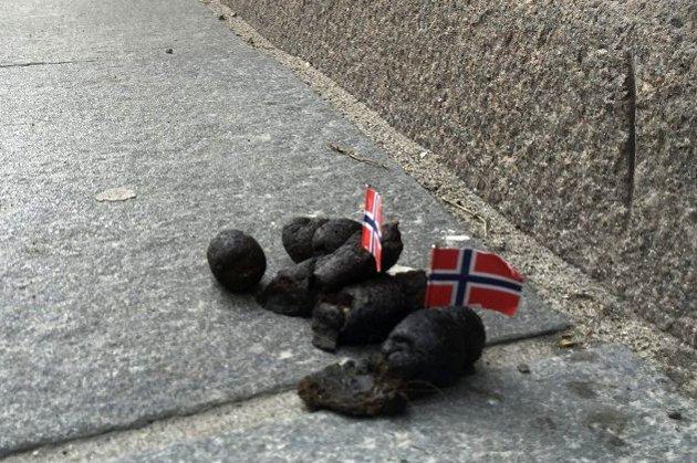 Illustrasjonsfoto: Pål Brikt Olsen, Østlandets Blad