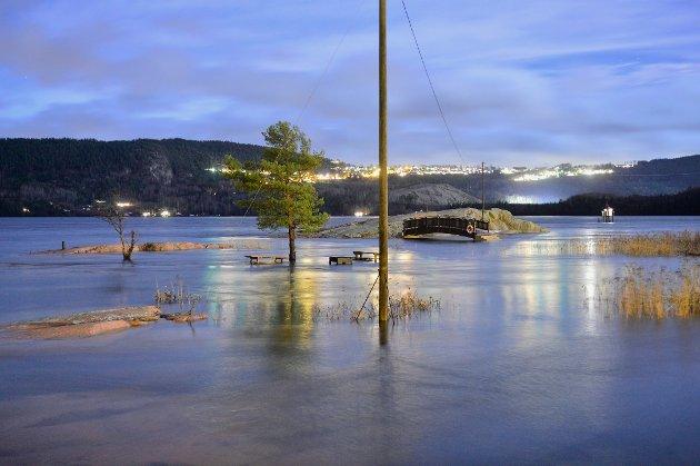 Skjæra i Svelvikstrømmen onsdag morgen.