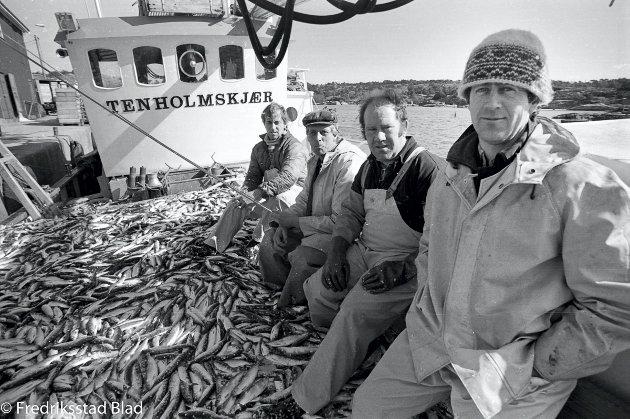 Fiskebåten ''Tenholmskjær'' leverer rekordfangster med sild til fiskemottaket til Fjordfisk S/L i Utgårdskilen på Hvaler. Foto: Jan Erik Skau, FB 05.04.1986  fiskebåter fiske fiskemottak