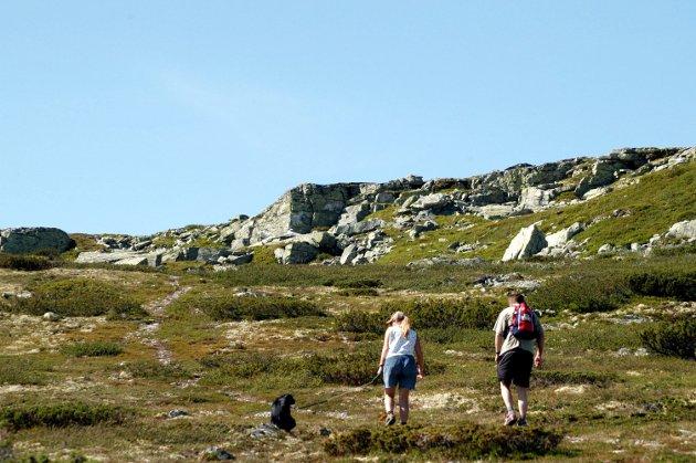 VERN: Skal Rondane nasjonalpark utvides sørover, helt til Friisvegen?