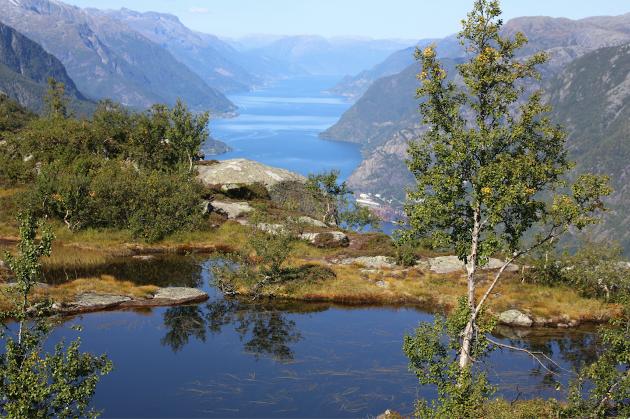 Sørfjorden, og ein idyll på Eidesnuten