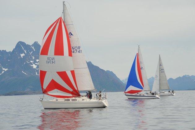 Vestfjordseilasen 1. juli 2017.
