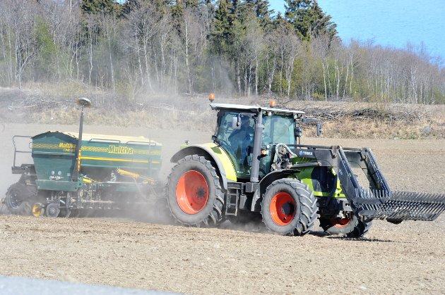 JOBB: - Vi har en jobb å gjøre for å sørge for at det norske landbruk er levedyktig, mener artikkelforfatteren. .