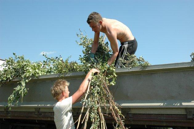 Sommerjobb i Jevnaker kommune. Vegar Lien (17) og Hans Martin Olsson (17)