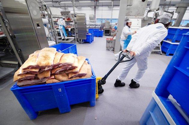 Den viktigste ressursen Nortura har er flinke produsenter og effektive medarbeidere. Disse flytter ikke med til Tønsberg, skriver Jacob Almlid.