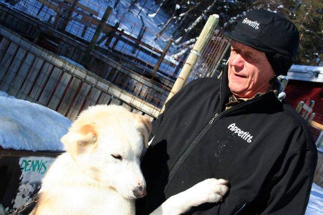 VETERAN MED VETTET I BEHOLD: Kjell Brennodden fra Folldal i hundegården hjemme. ARKIVFOTO: Guri Jortveit