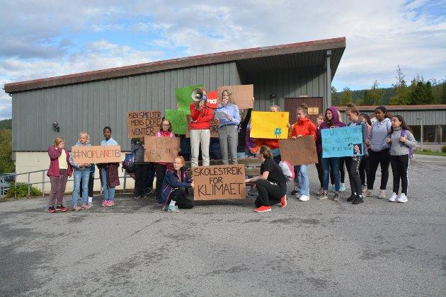 Skolestreik for klimaet  på Tingvoll.