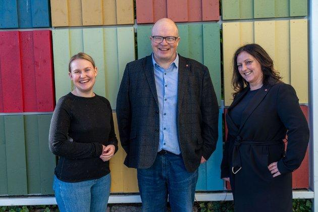 Ap: Per Vidar Kjølmoen, Åse Kristin Ask Bakke og Berit Tønnesen