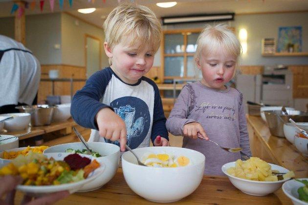 MATSERVERING: Etter vår oppfatning er det å skape et fellesmåltid med matlaging og borddekking en god læring og en god oppdragelse.
