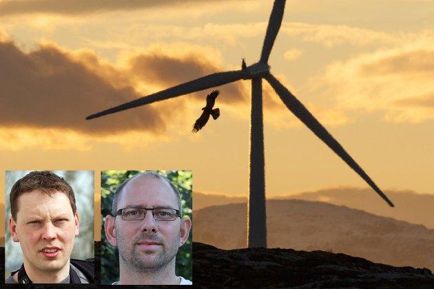 Konsesjonene for vindkraft de siste tiårene er i stor grad gitt i konflikt med verneområder, våtmark, hubro, havørn og fugletrekk.