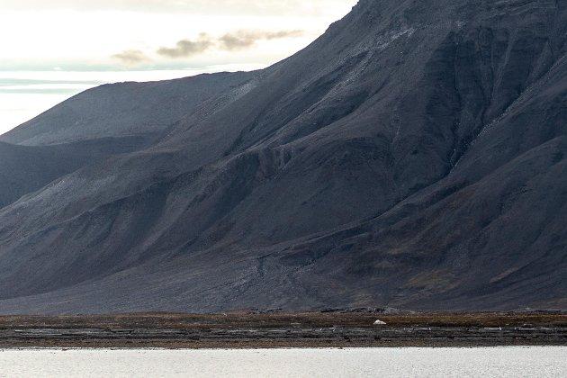Der stod eg: Kald og forlatt i Arktis. Mitt siste, eller i alle fall tilnærma siste, håp var i den bittelille lettbåten som tøffa sakte, sååå sakte, vekk frå stranda.