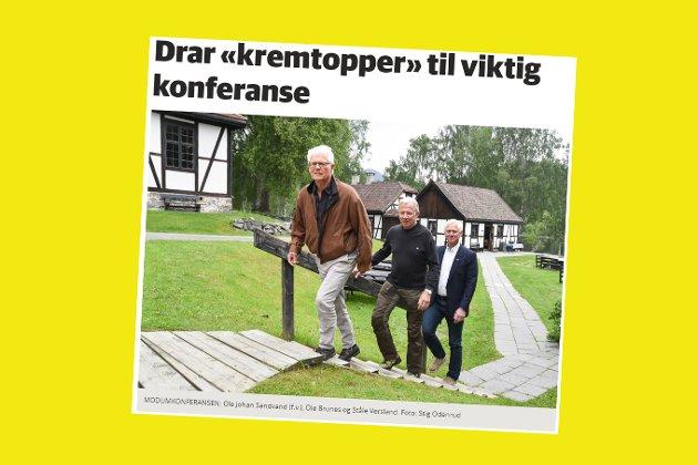 Skjermdump fra bygdeposten.no 19. juni 2017.
