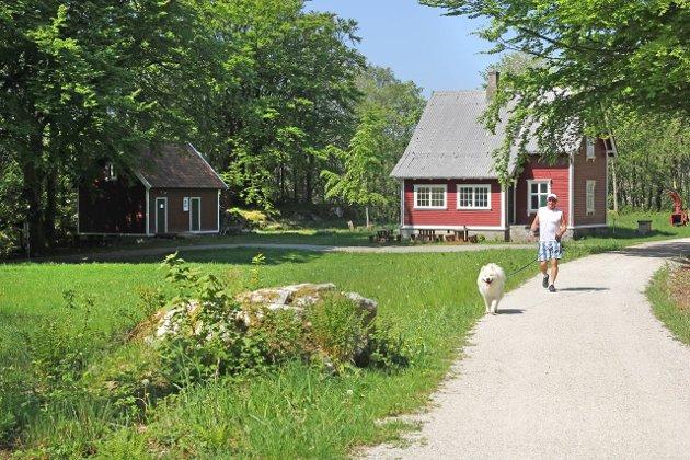 """Ola Undheim er fornøyd med måten kommunen """"passer på"""" Den gamle jærbanen. Dette bildet fra Maurholen er tatt en tidligere sommer."""