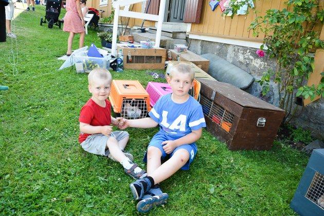 August (2,5) og Albert (5) Engen Sire
