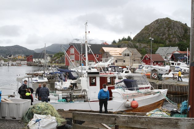 Bra med båtar og eit yrande liv på hamna.
