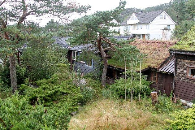 LITE SKJER: Jotunet er kjeda saman av fleire gamle bygningar som kunstnaren Bjørn Hegranes fekk frakta til Florø frå m.a. Naustdal. Kunstnarheimen blei testamentert til Kystmuseet, men slektningane til Hegranes er lite imponert over forvaltninga av arva.