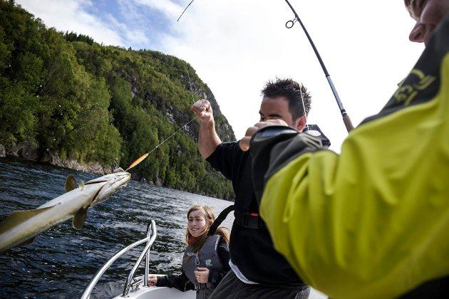 Natur og Ungdom sin sommarleir på Vevring i Naustdal.