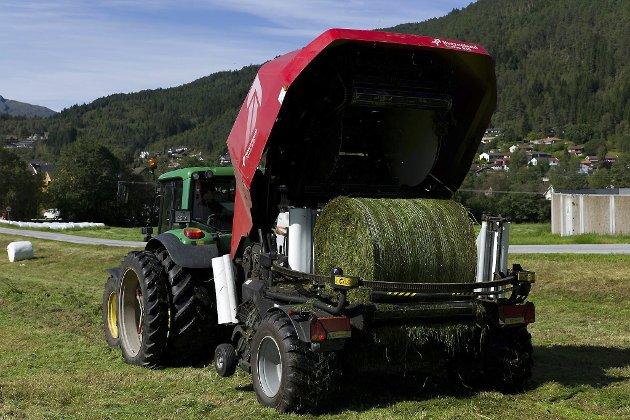 JORDBRUK: «Mjølk- og kjøttproduksjon er viktig i vårt fylke, då grovfôr utgjer ein svært stor del av det som blir dyrka», skriv artikkelforfattaren.