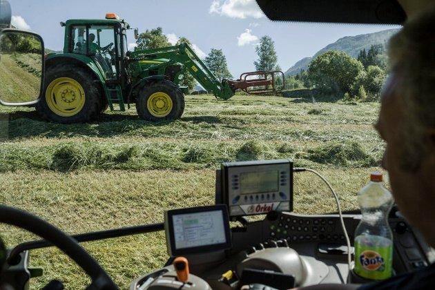STATSBUDSJETT: – Når det gjeld landbrukspolitikken ser vi ein sterk vilje til å sentralisere og satse på større bruk. Det gjer at vestlandslandbruket strevar i motbakke, skriv Trude Brosvik.