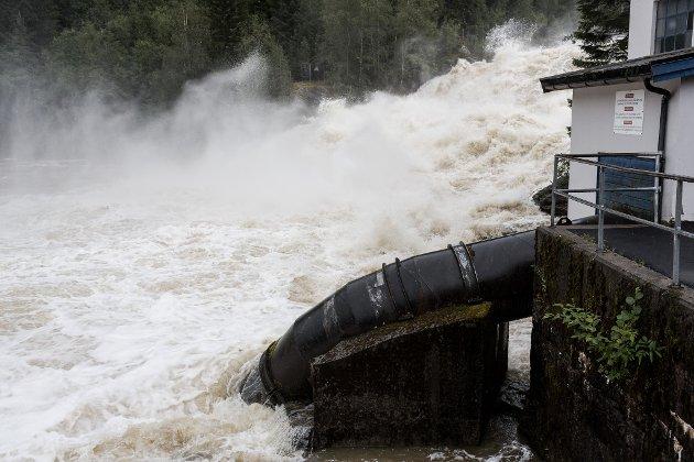 Noko av krisa for laksefisket i Jølstra skuldast Brulandsfoss kraftverk, skriv ein gjeng naturinteresserte og fiskeinteresserte førdianarar i dette innlegget.
