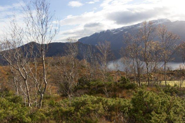 Læraren min fortalde meg at nokon ville grave i Engjabøfjellet (arkivbilde) . Dei ville bruke noko av det dei tok ut av berget og hive resten i Førdefjorden, skriv Sigrid Margrethe Hoddevik Losnegård.