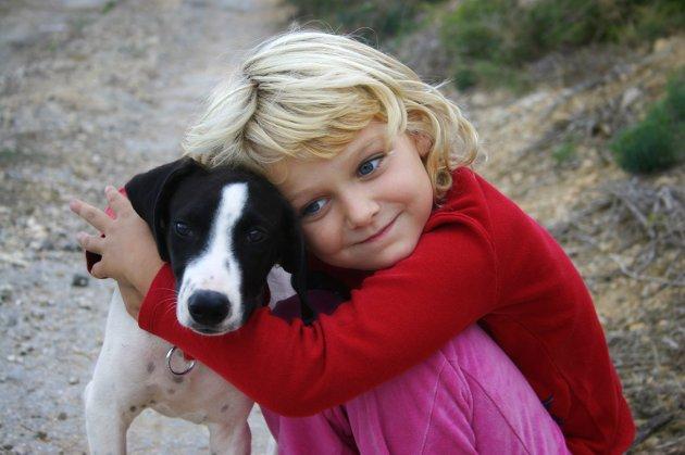 Økt livskvalitet og økt ansvar: Er vi egentlig sikre på at det passer å ha det samme dyret om tre år – eller om fem, spør veterinærforeningens president.