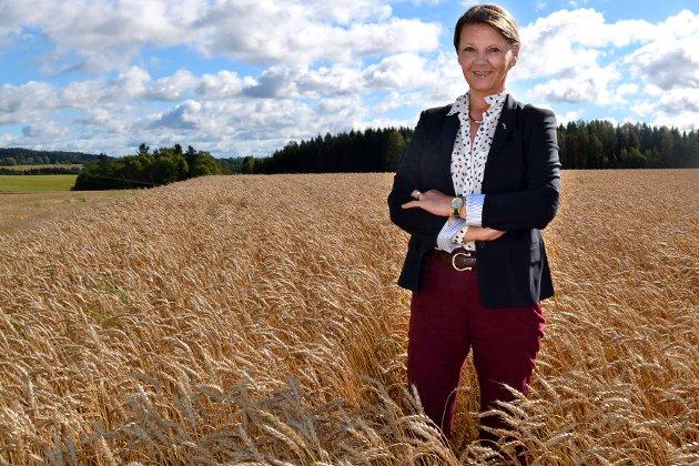 – At vi opp til flere ganger må angripes for det gode været – ja ja, det kan vi alltids like! skriver Ingjerd Schou om de gode resultatene for norsk landbruk siden Regjeringen Solberg overtok.