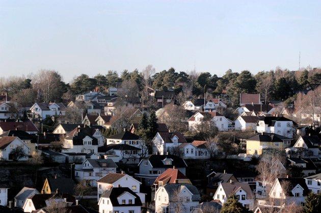 – For de aller aller fleste blir boliger som på dette bildet med drømmen. For det er helt «umulig» å få seg tomt i Fredrikstad. Utvalget er svært begrenset og prisene blir derfor skyhøye, mener Dan André Syversen.