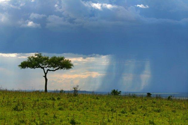 Annet tidsperspektiv: Den gamle afrikanske mannen forklarte med verdighet sitt eget mål på tiden.