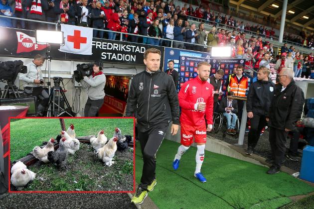 Det ble litt om Bjørn «Bummen» Johansen, høner, Grand Prix og tålmodighet i denne ukas pølsevev.