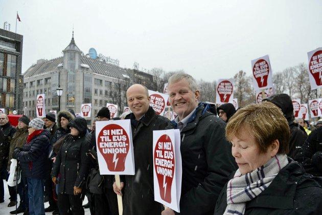 Nei til ACER var budskapet på demonstrasjonen mot ACER 23.1.18. på Eidsvolls plass.