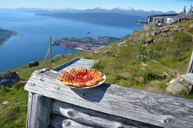 Narvikfjellet er et vakkert skue med Ofotfjorden som bakteppe. TV-sendinger herfra vil være svært god reklame både regionalt og nasjonalt.